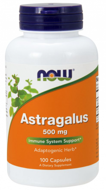 ASTRAGALUS 500mg 100 CAPS NOW Foods